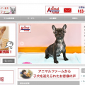 ワードプレスによるホームページの制作事例